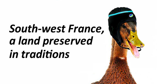 bikever bike hiring rental regions south west culture duck confit rugby land tradition
