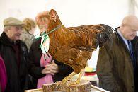 bikever location velo regions sud ouest culture terroir table gastronomie poulet chapon