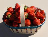 bikever location velo regions sud ouest culture terroir table gastronomie fraises perigord