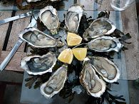 bikever bike hiring rental regions south west culture terroir table gastronomy oyster arcachon
