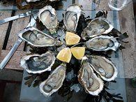 bikever location velo regions sud ouest culture terroir table gastronomie huitre arcachon