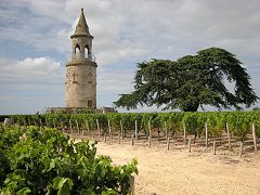 bikever bike hiring rental regions south west places cities unusual landscape wineyard tower castle